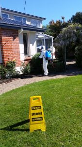 A pest control worker spraying a house