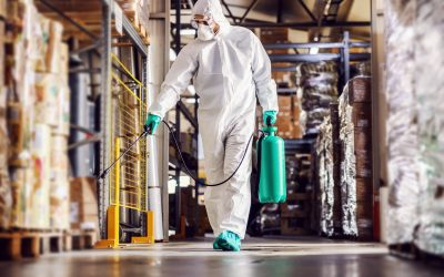 Why is pest control important in food safety?